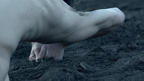 Metaphors of the body